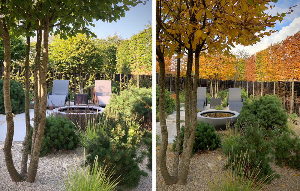 Colm Joseph Gardens landscape design for seasonal change
